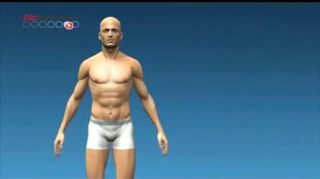 Imprimer des organes en 3D, bientôt une réalité ?
