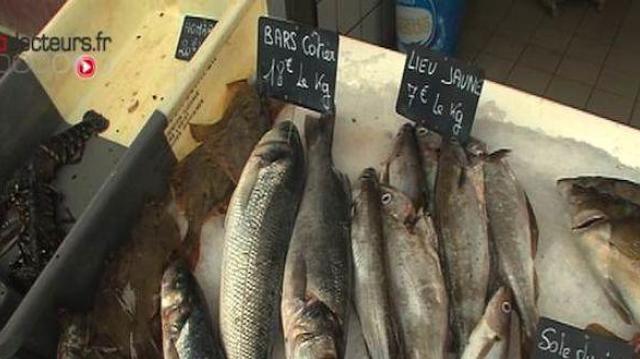 Moins de viande et plus de poisson contre le cancer colorectal ?