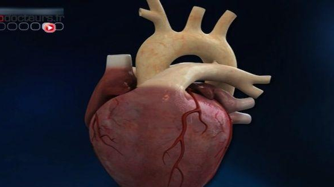 Les femmes malades du coeur
