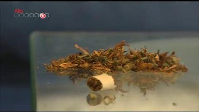 Le cannabis thérapeutique autorisé pour un patient - Reportage du 20 novembre 2013