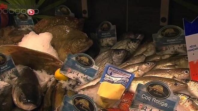 Le poisson est-il bon pour la santé ?