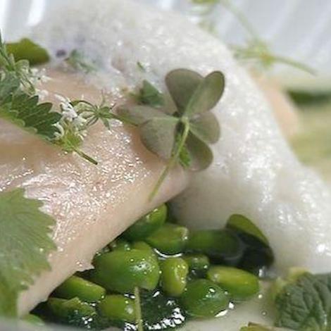 Cuisinez sain avec des herbes aromatiques