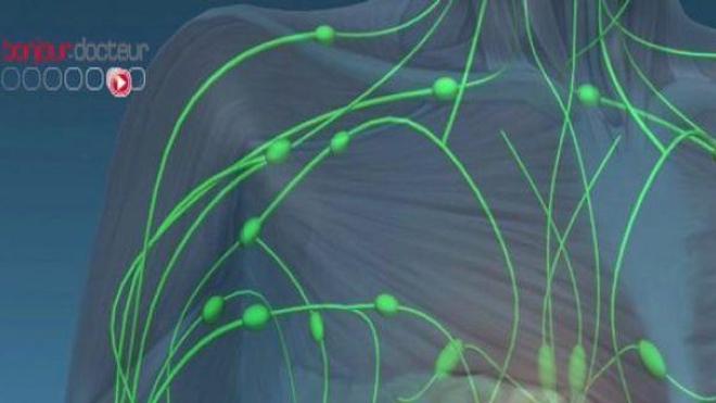 Que sont les cellules tumorales circulantes ?