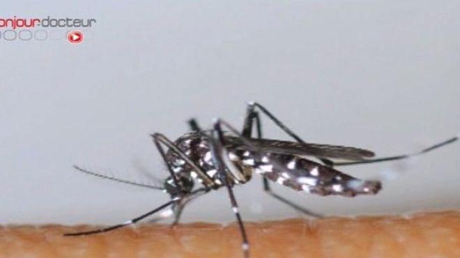 Chikungunya : ''au moins 15% de la population'' aurait été touchée
