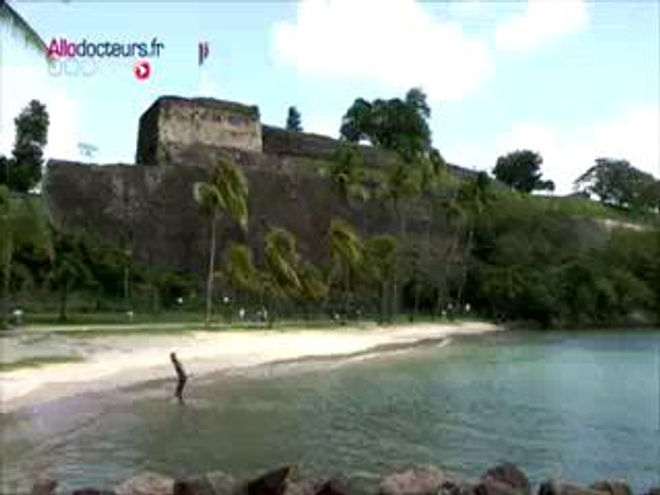 Les Antilles confrontées au chikungunya