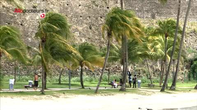 Chikungunya : opération démoustication en Martinique