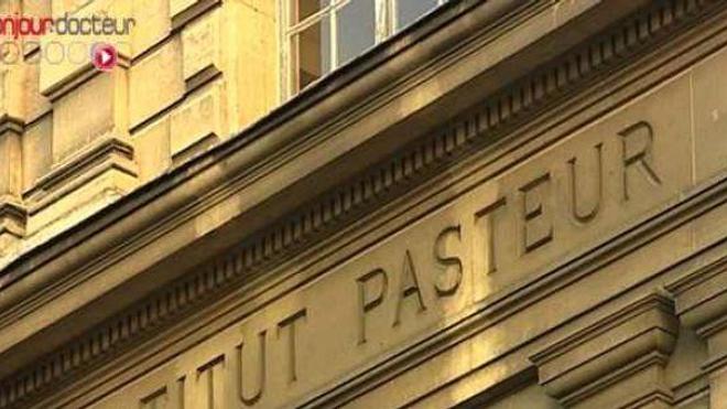 L'Institut Pasteur appelle aux dons pour la recherche