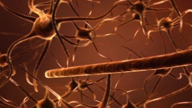Plan de lutte contre les maladies neuro-dégénératives : les premières mesures dévoilées