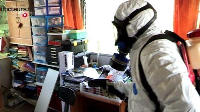 Chikungunya : près de 875.000 cas dans les Caraïbes et les Amériques