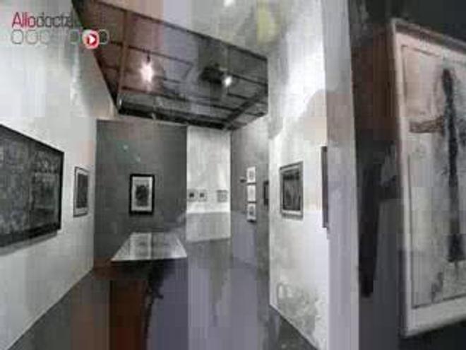 Visite d'une exposition d'art brut à la Maison Rouge à Paris.