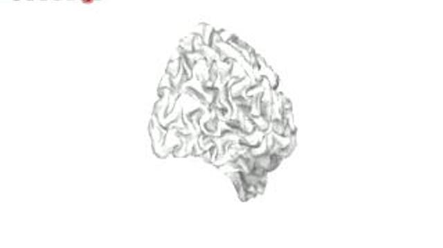 Jouez pour faire avancer la recherche sur le cerveau