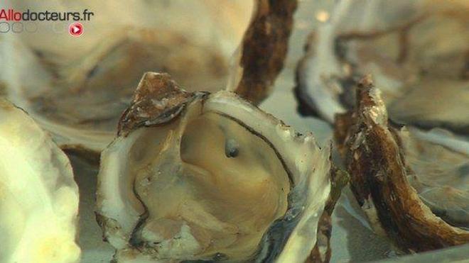 Plus de 80% des norovirus responsables de la gastro-entérite se retrouvent dans les huîtres.