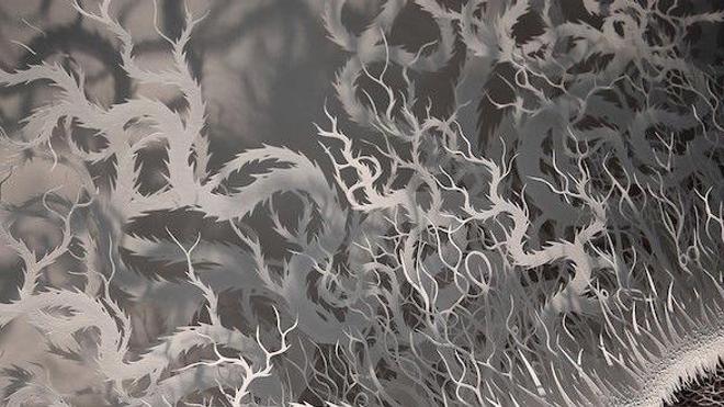 Détail de l'œuvre ''Cut Microbe'' réalisée en 2015 par l'artiste Rogan Brown (tous droits réservés)