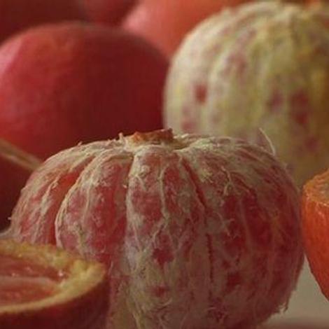 Les agrumes et leurs bienfaits pour la santé