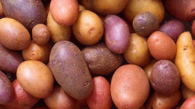 Des pommes de terre. (Crédits : Scott Bauer)