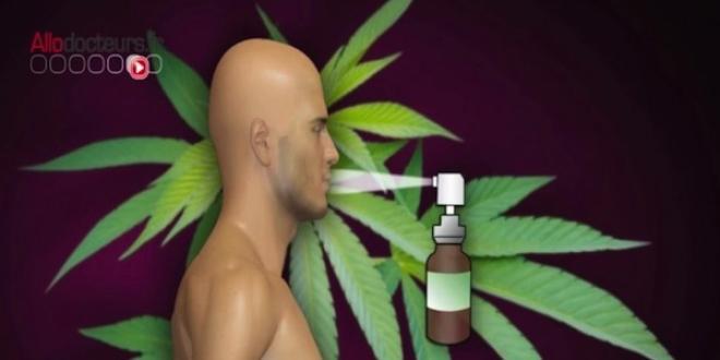Le Sativex® se présente sous forme de spray.