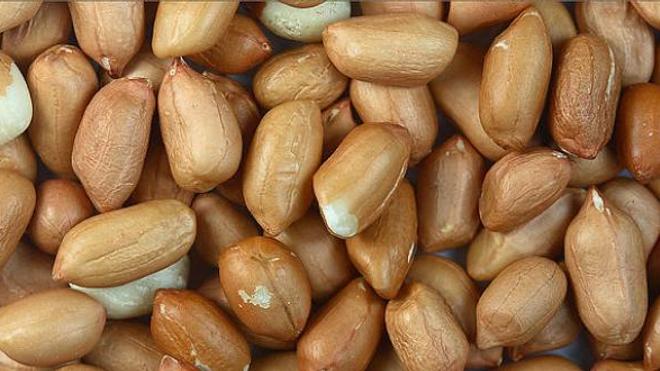 L'allergie à l'arachide est l'une des causes les plus courantes de l'anaphylaxie, une réaction d'intolérance potentiellement fatale.