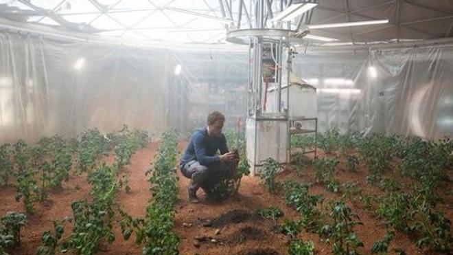 """Dans le film """"Seul sur Mars"""", Mark Watney (Matt Damon) cultivait des pommes de terre dans sa base... mais celles-ci étaient-elles propres à la consommation ? (crédits : Twentieth Century Fox)"""