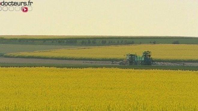 Agriculture : de nouvelles mesures contre les pesticides
