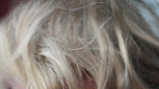 Le mystère des cheveux incoiffables s'éclaircit (image d'illustration)