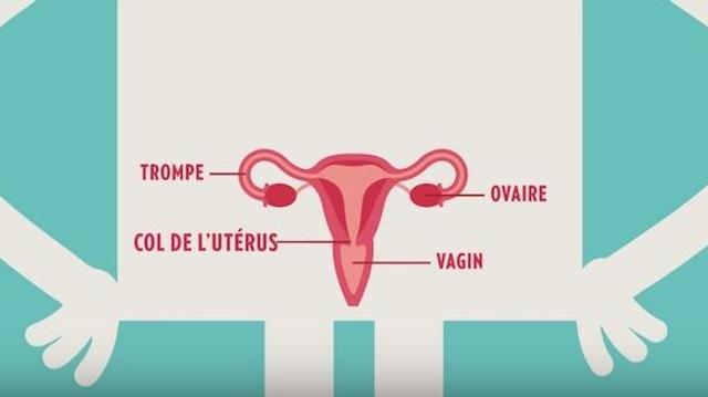 Un frottis régulier pour éviter 90% des cancers du col de l'utérus