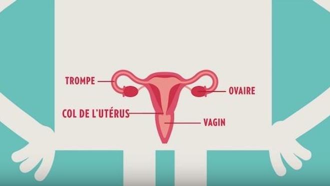 Vignette extraite de la campagne d'information 2017 de l'INCa.