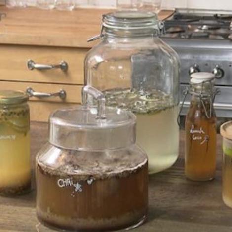 Les aliments fermentés, un atout pour la santé