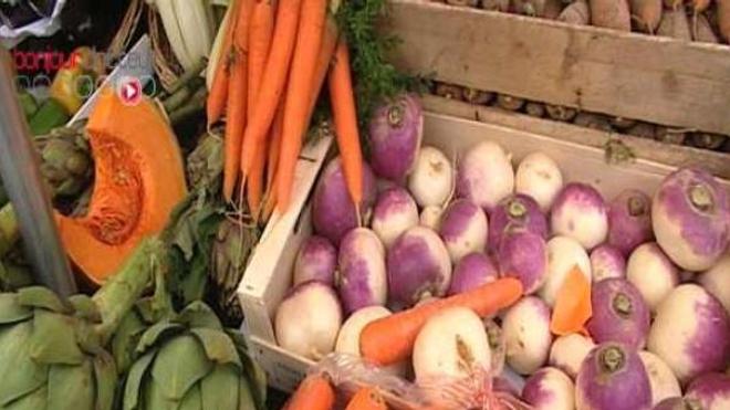 Les fruits et légumes de saison sont bien plus riches que ceux produits sous serre et importés.