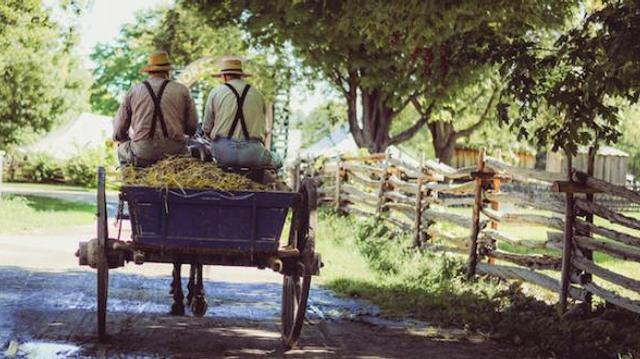 Une mutation génétique permettrait aux Amish de vivre plus longtemps