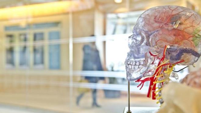 """Un neurochirurgien affirme avoir réussi une """"greffe de tête"""" sur un cadavre"""