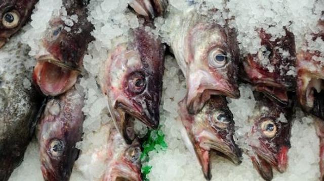Le poisson pendant les fêtes, à quelle dose ?