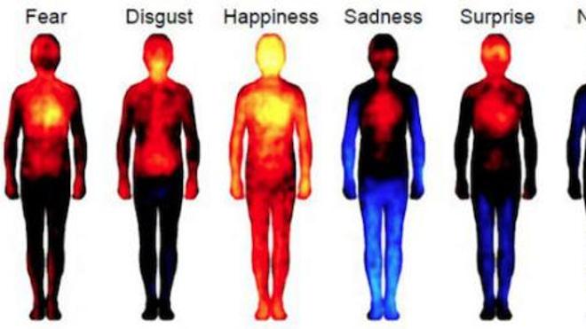 Testez votre intelligence émotionnelle