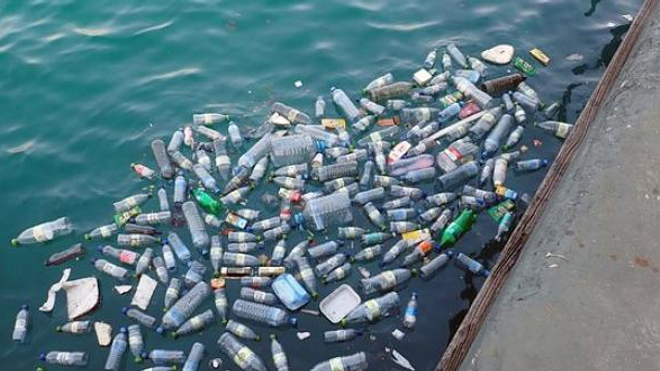 Découverte d'une enzyme artificielle qui pourrait dégrader les bouteilles en plastique