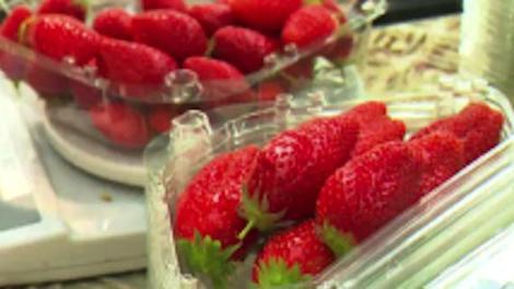 La fraise, de la cueillette à l'assiette