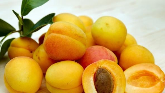 Amandes d'abricots : attention cyanure !