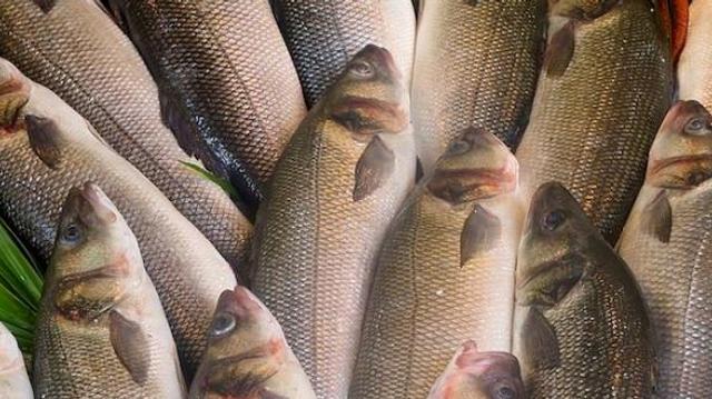 Selon l'UFC-Que Choisir, trop de poissons issus de la surpêche en supermarché
