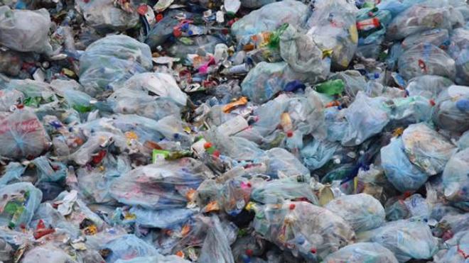 Interdiction des sacs plastiques : quel bilan après deux ans ?