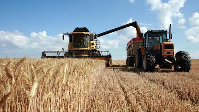 Suicide : les agriculteurs plus à risque