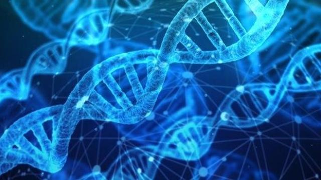 2019 : un tournant dans le traitement des maladies génétiques