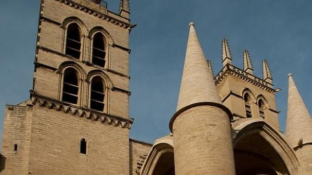 L'université de médecine de Montpellier célèbre ses 800 ans