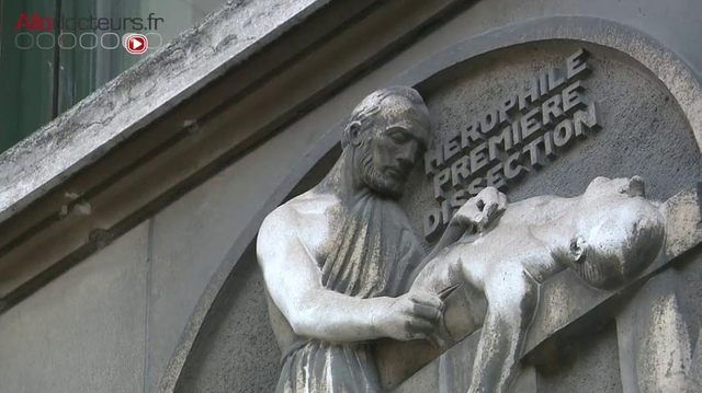Don de corps à la science : un charnier au coeur de l'université Paris-Descartes