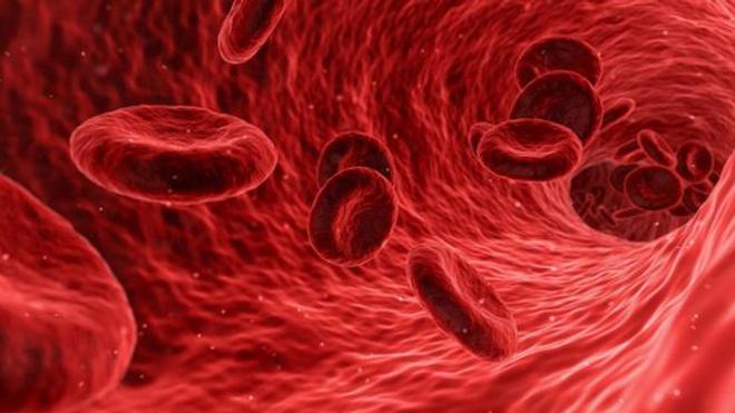 Pourquoi les personnes de groupe sanguin O seraient moins à risque de coronavirus ?