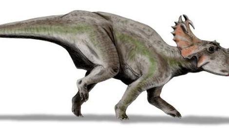 Les dinosaures souffraient aussi du cancer