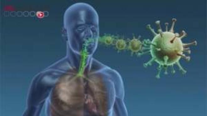 Plus de 6000 nouveaux cas de contaminations, nouveau record