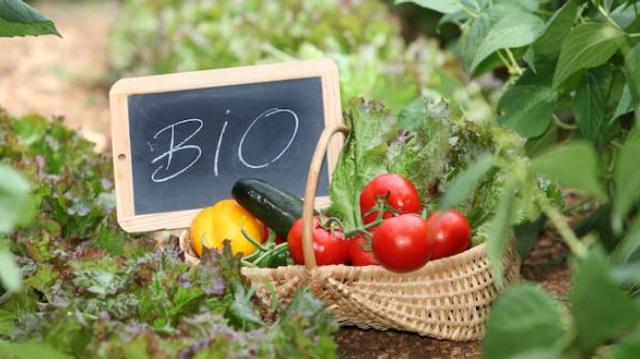 Les consommateurs d'aliments bio moins à risque de diabète ?
