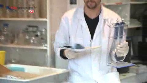 Au centre anatomique d'Orsay, des chercheurs tentent d'expliquer les causes de la schizophrénie