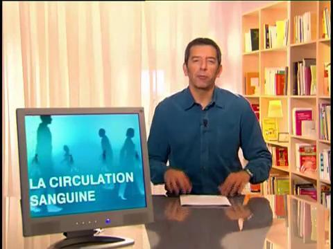 Michel Cymes décrit les veines.