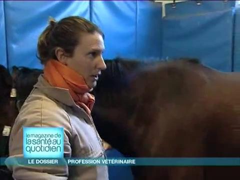Comment se déroule la formation de vétérinaire ?