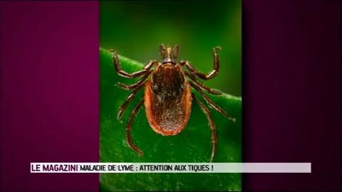 Marina Carrère d'Encausse et Michel Cymes décrivent l'évolution de symptômes de la maladie de Lyme.
