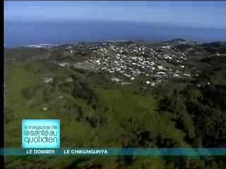 Qu'est-ce que le chikungunya ? (reportage diffusé le 2 février 2006)